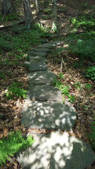 montshire trails