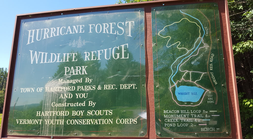 hurricane forest map