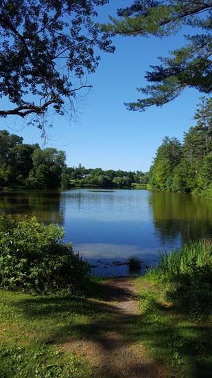 Pine Park: Hanover, NH