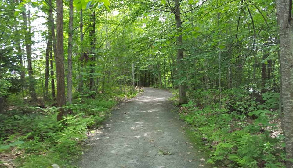 Albert Schweitzer Trails at Dartmouth