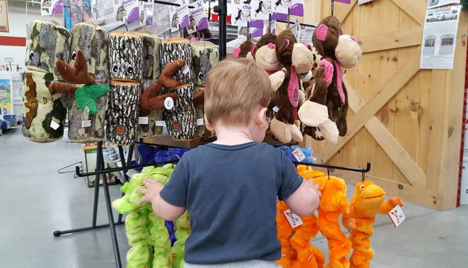 Rainy Day Fun for the Little Ones: Kid Friendly Stores to Explore