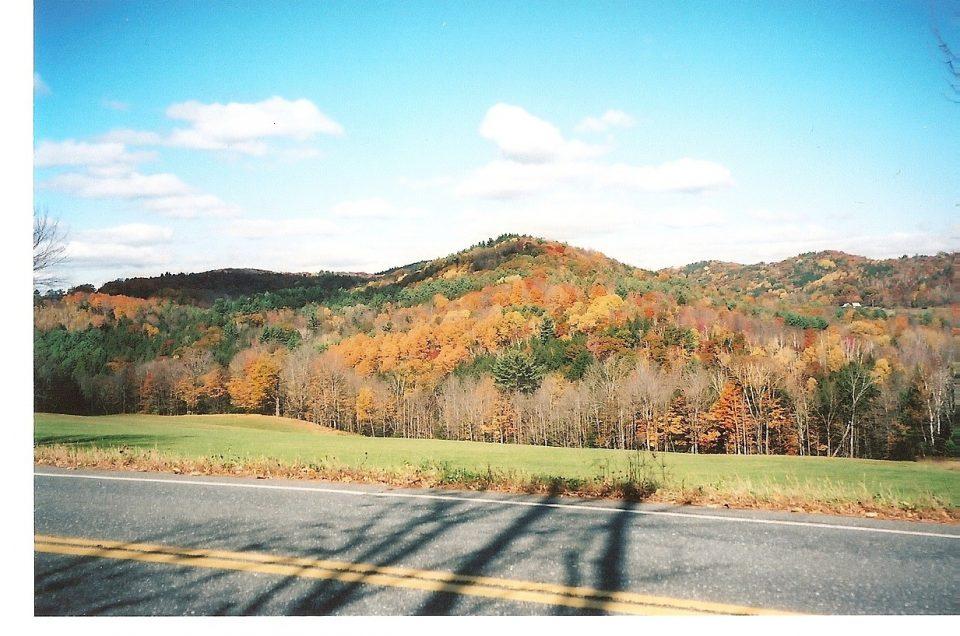 Fall Foliage Drives to Enjoy