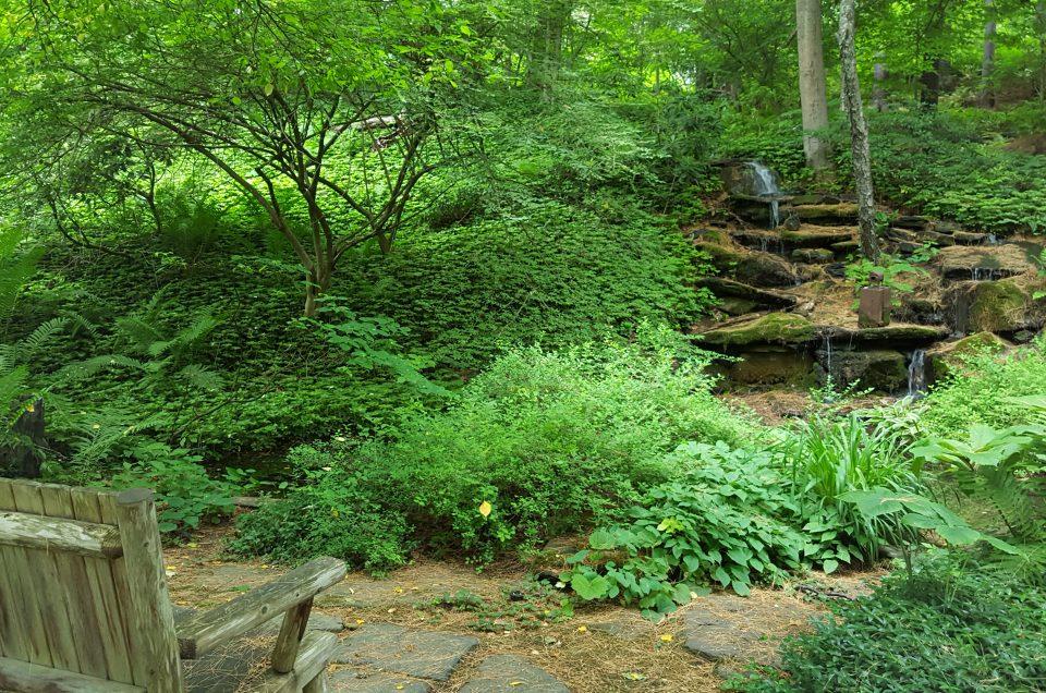 Our Own Secret Garden in the Upper Valley: Nathan's Garden