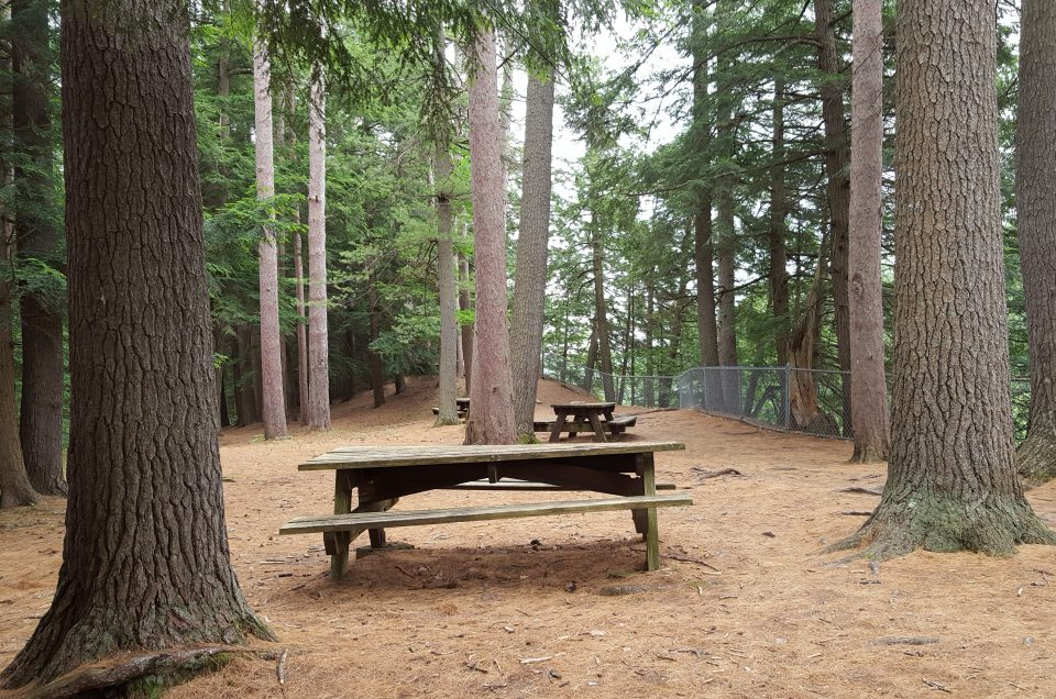 7 Quiet Places to Picnic in the Upper Valley and 1 Beyond…