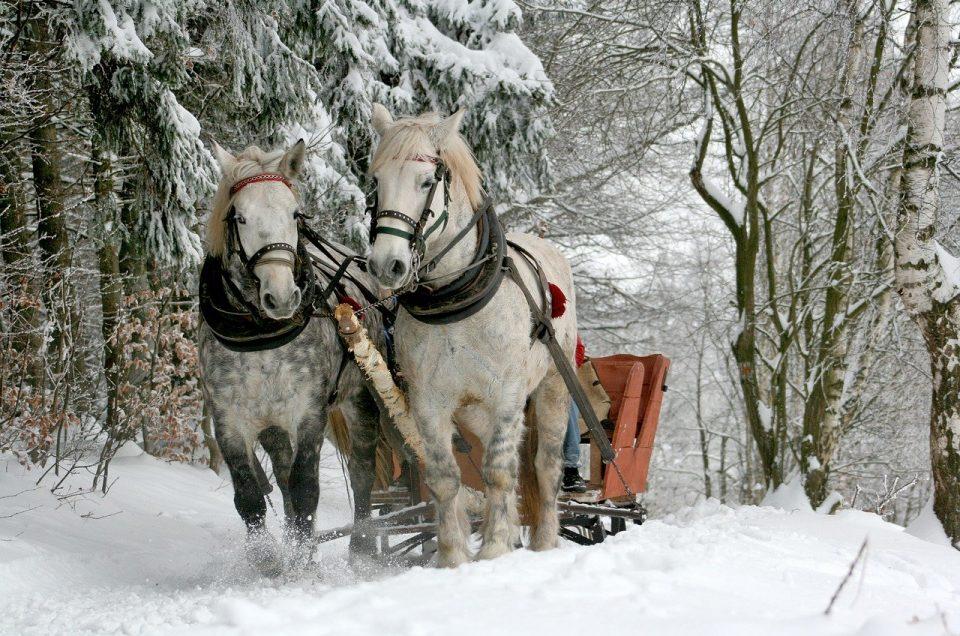 sleigh ride upper valley