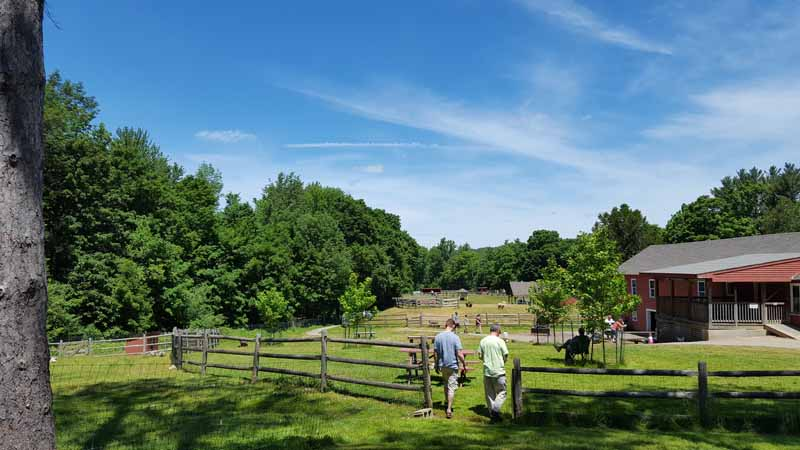 The Friendly Farm: A Day Trip Your Kids will Love