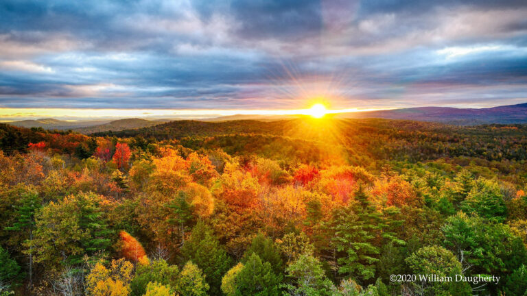 Why We Love it Here: Local Fall Photographers to be Amazed By